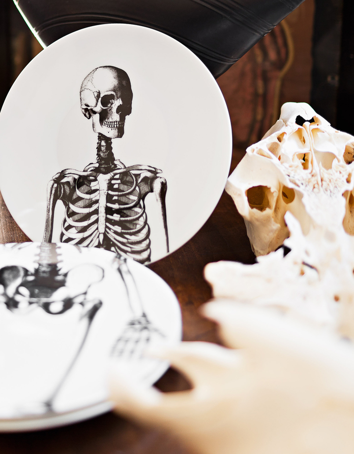Animal Fabuleux-Arts de la Table-Memento Mori-0 - photo 4